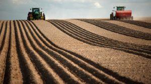 Bedeutung der sächsischen Landwirtschaft: Studie für das Landesamt für Umwelt, Landwirtschaft und Geologie zur volkswirtschaftlichen Bedeutung der sächsischen Landwirtschaft