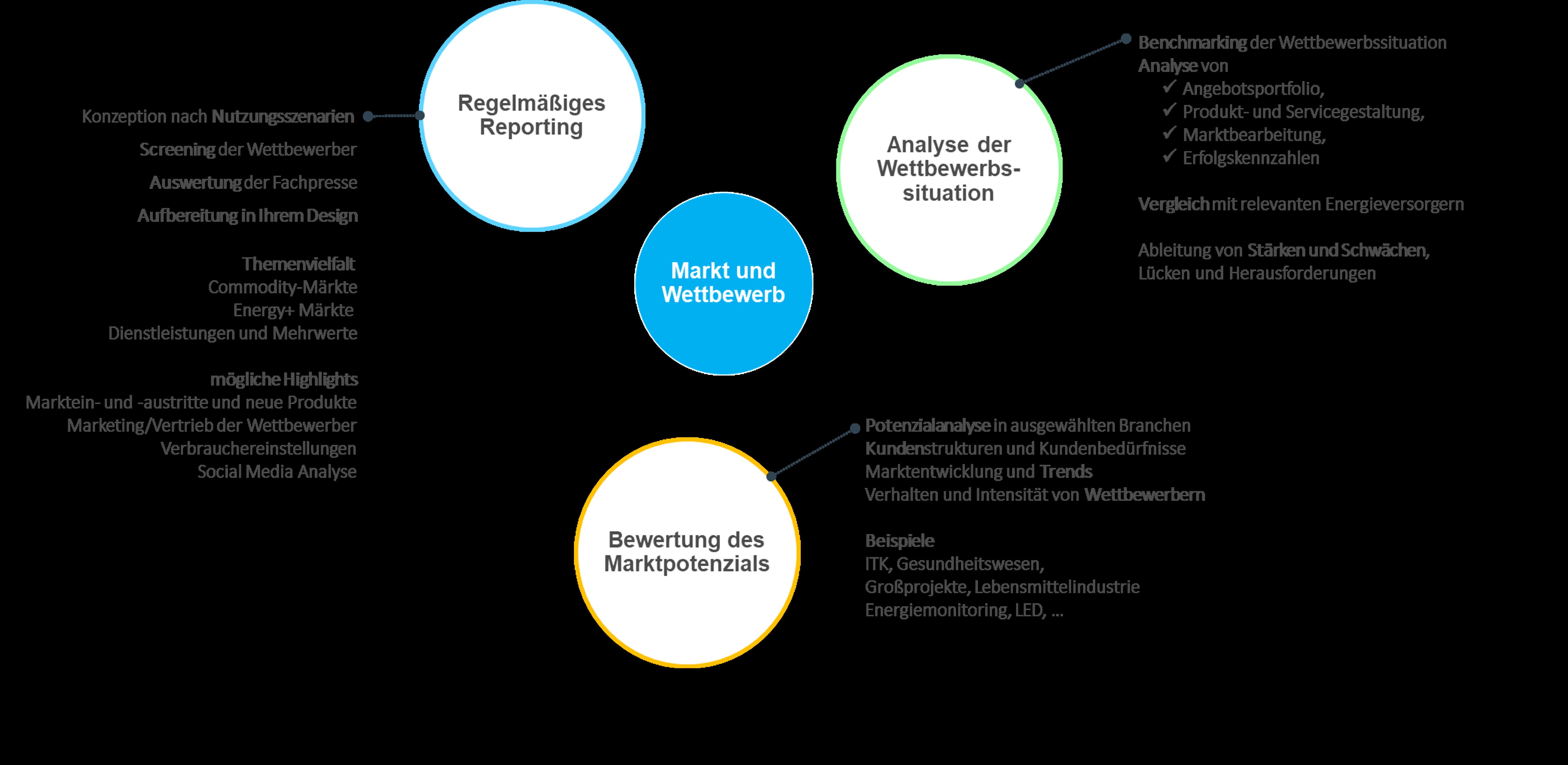 Vorgehen zur Implementierung einer individuellen Marktbeobachtung